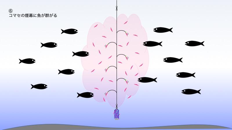図:工程6 コマセの煙幕に魚が集まる